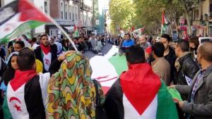 Sahara manifestación